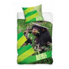 Detské obliečky Animal Planet - Šimpanz v prírode