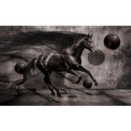 3D Fototapeta Kôň